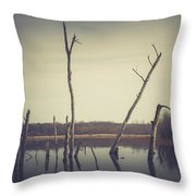 All Is Calm At Green Bottom Throw Pillow