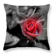 All Is Forgiven Throw Pillow