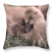 All Is Right In My World Throw Pillow