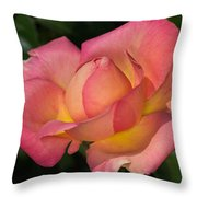 All It's Glory Throw Pillow