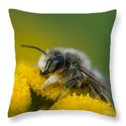 All Mine Throw Pillow