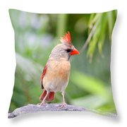 All Mohawk  Throw Pillow