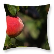 All Natural Peach Throw Pillow