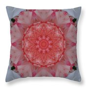 All Points South Throw Pillow