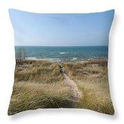 All Sand Path Throw Pillow