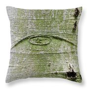 All-seeing Eye Of God On A Tree Bark Throw Pillow