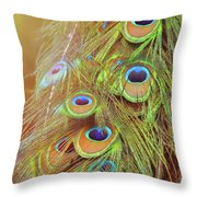 All-seeing Throw Pillow