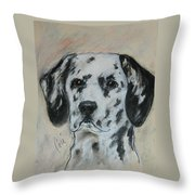 All Spots Throw Pillow