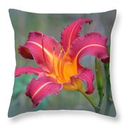 All Summer Lily Throw Pillow