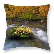 All That Is Gold Throw Pillow