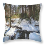 All That We've Been Through Throw Pillow