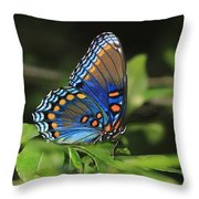 All The Colors Of The Sunset Sky Throw Pillow