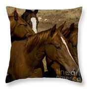 All The Girls-signed Throw Pillow