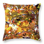 All The Leaves Are Red And Orange Fall Foliage With Sunshine Throw Pillow