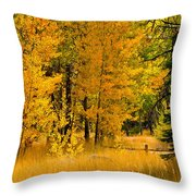 All The Soft Places To Fall Throw Pillow