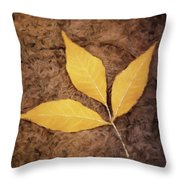 All Things Must Pass Throw Pillow