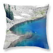 All This In The Usa Throw Pillow