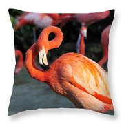 All Twisted Up Throw Pillow