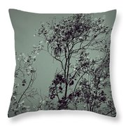 All With Time... Throw Pillow