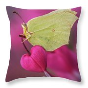 All You Need Is Heart Throw Pillow
