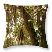 Allamanda And Oak Tree Throw Pillow