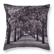 Allee Way Bw Throw Pillow