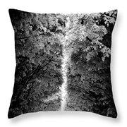 Allee_des_arbres Throw Pillow