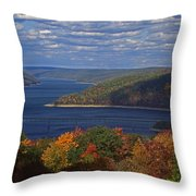 Allegheny National Forest Lake  Throw Pillow