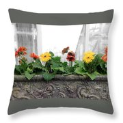 Allen Garden - Toronto Throw Pillow