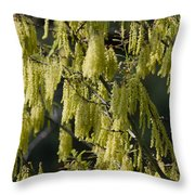 Allergies Throw Pillow