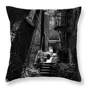 Alley Garden Throw Pillow