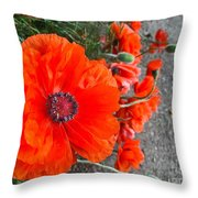 Alley Orange Red Poppies  Throw Pillow