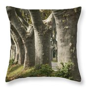Alley Provence  Throw Pillow