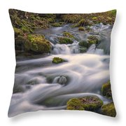 Alley Spring Rapids Fall Mo Dsc09212 Throw Pillow