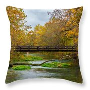 Alley Spring River Throw Pillow