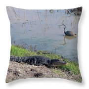 Alligator And Heron Throw Pillow
