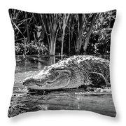 Alligator Bags Of Port Aransas Throw Pillow