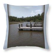 Alligator Bayou Throw Pillow