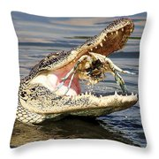 Alligator Catching And Cracking A Blue Crab Throw Pillow