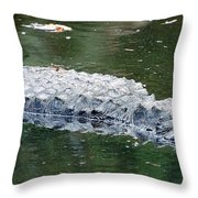 Alligator Crawl Throw Pillow