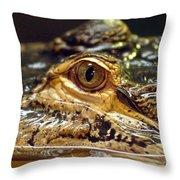 Alligator Eye Close Up-2 Throw Pillow