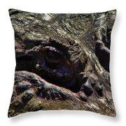 Alligator Eye Throw Pillow