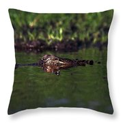 Alligator Eyes Throw Pillow