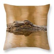 Alligator Head Throw Pillow