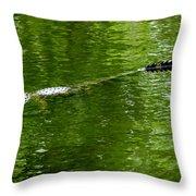 Alligator In Wait Throw Pillow