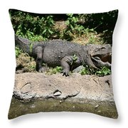 Alligator Surprise Throw Pillow