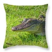 Alligator Up Close  Throw Pillow by Allen Sheffield