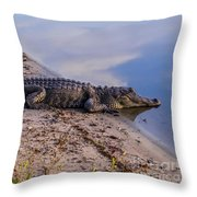 Alligator Warming In The Sun Throw Pillow