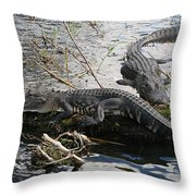 Alligators In An Everglades Swamp Throw Pillow