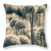 Allium 2 Throw Pillow